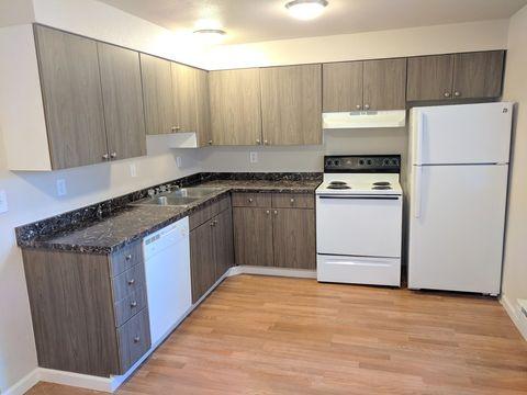Reno Nv Pet Friendly Apartments For Rent Realtor Com