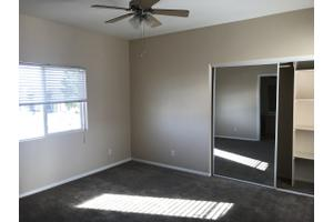 Apartments for Rent at Plum Tree Luxury Apartments - 14344 McArt ...