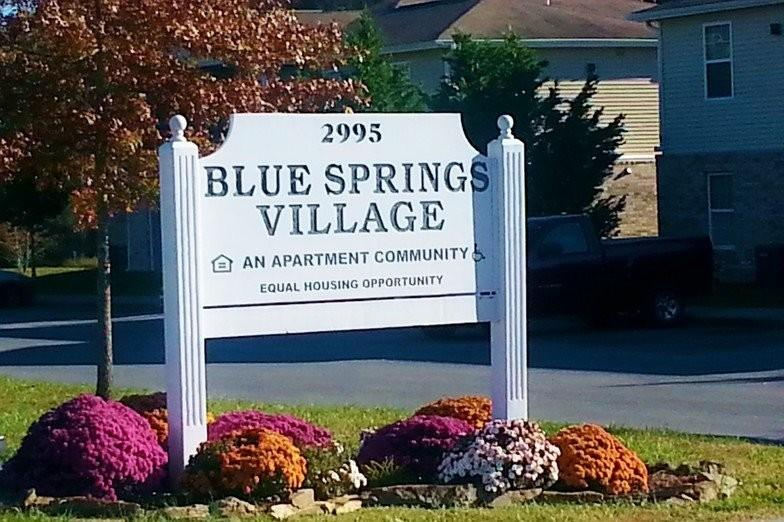 Blue Springs Village