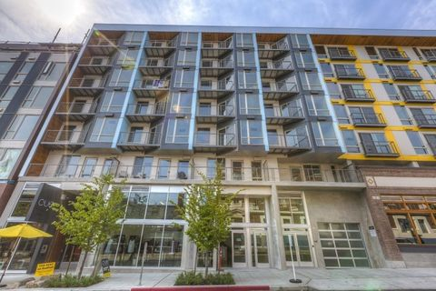 1525 Harvard Ave, Seattle, WA 98122. Apartment For Rent