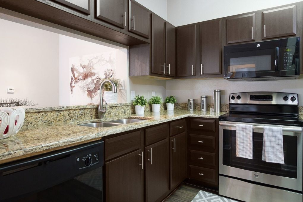 new tampa tampa fl apartments for rent