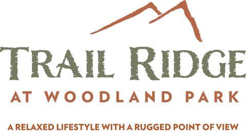 704 Stone Park Ln, Woodland Park, CO 80863