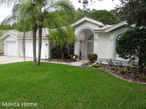 1277 Kings Way Ln, Tarpon Springs, FL 34688