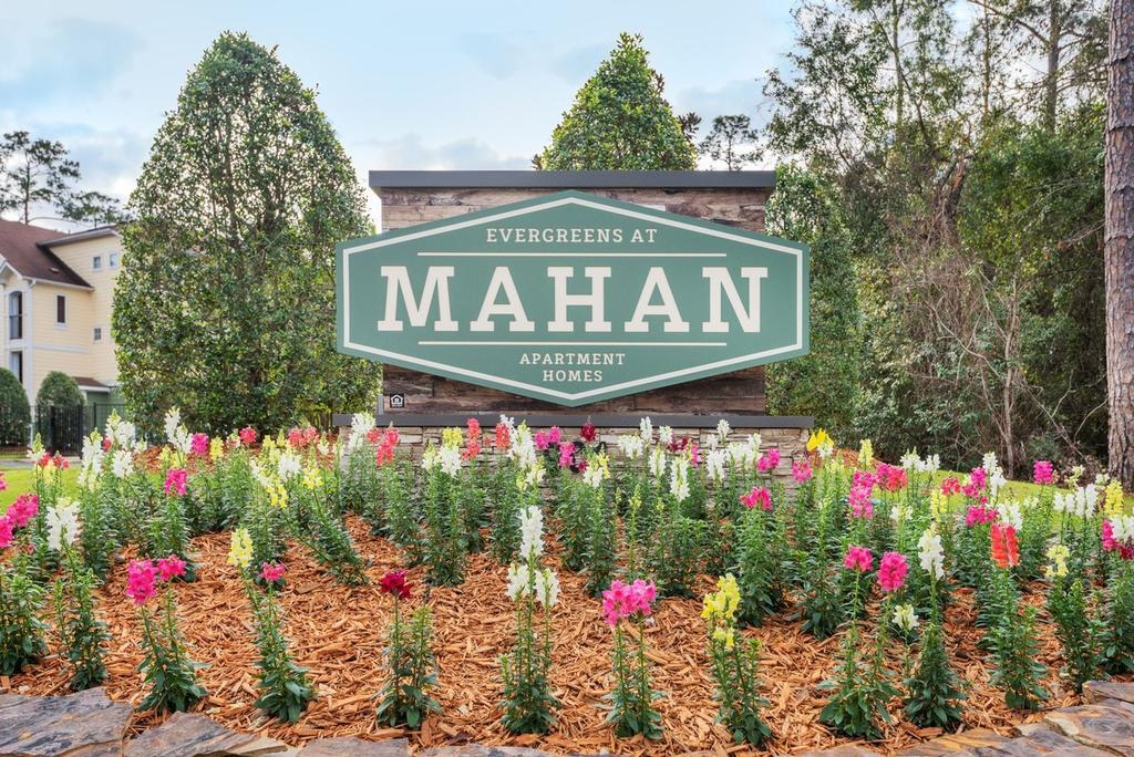 Evergreens at Mahan I
