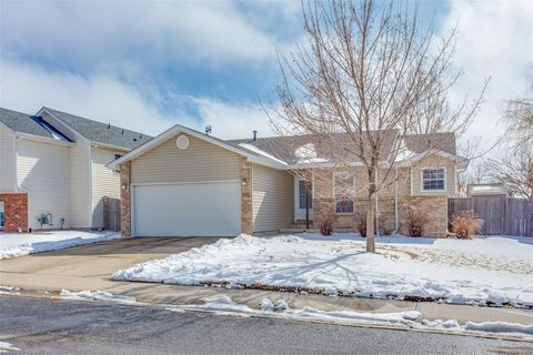 Photo of 806 Mc Clure Ave, Firestone, CO 80520