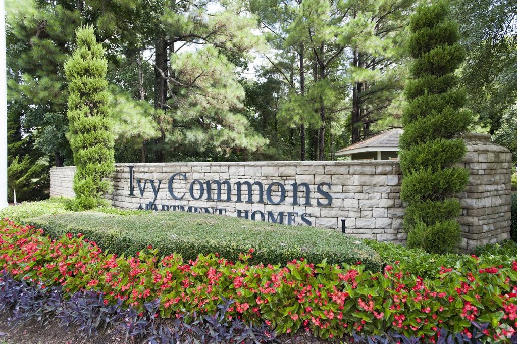 Ivy Commons