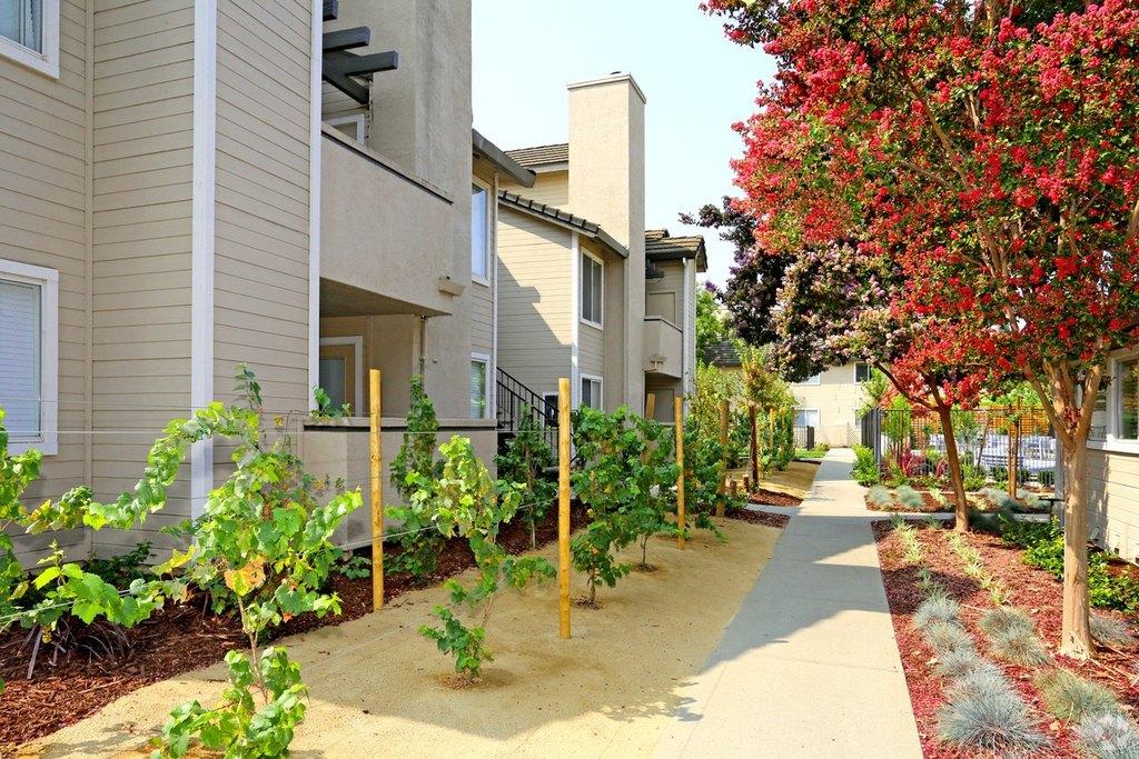 Chardonnay Garden Apartments