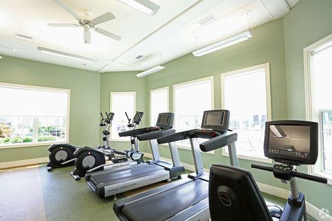 New Tampa Tampa Fl Apartments For Rent Realtorcom