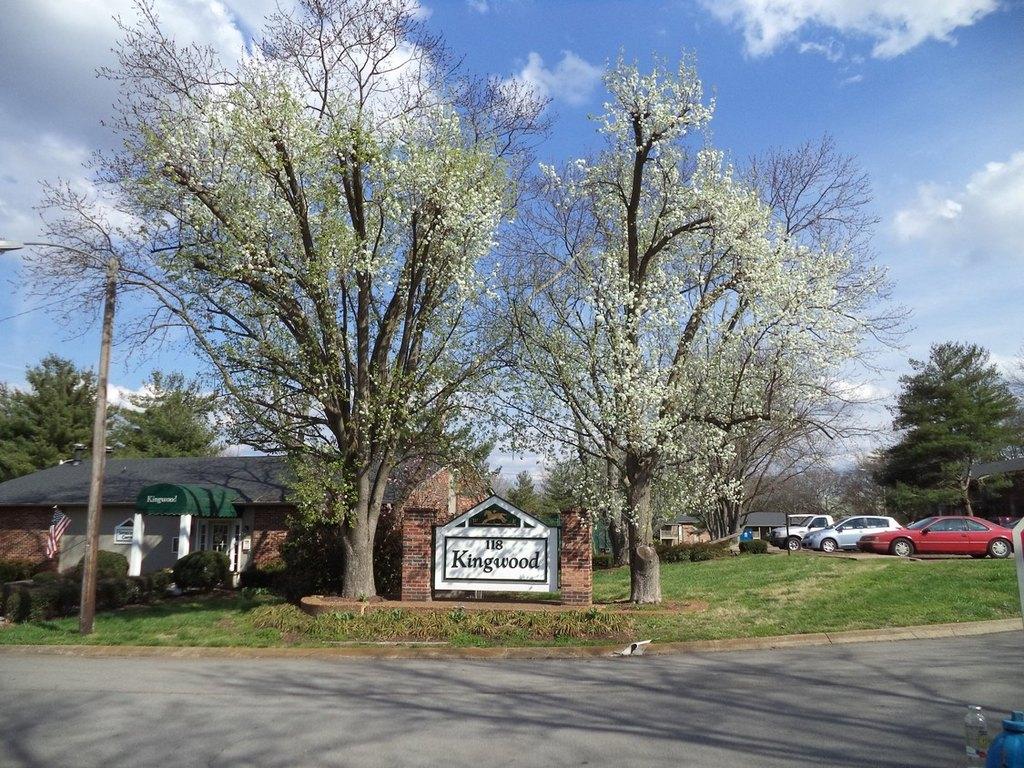 118 E Kingwood Dr  Murfreesboro  TN 37130. John Pittard Elementary School in Murfreesboro  TN   realtor com