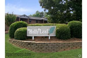 2x1.5 950sf b Apartment for Rent at Holly Leaf Apartments - 2205 ...