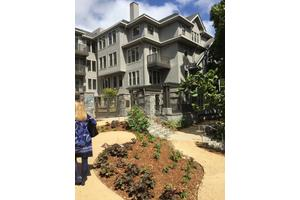 Apartments For Rent At 1000 Dewing Ave 313 Lafayette Ca 94549