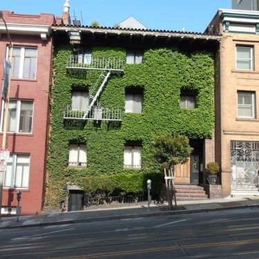 1022 Powell St, San Francisco, CA 94108