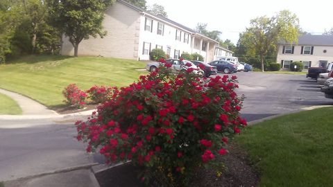 Photo of 228 Grovewood Pl Apt A, Beech Grove, IN 46107