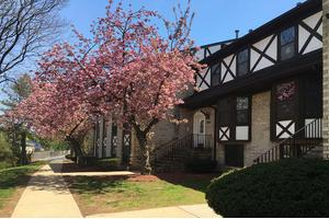 Sleepy Hollow Ford >> Apartments For Rent At 300 Ford Ave Fords Nj 08863 Sleepy