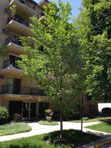 115 Marengo Ave Apt 302, Forest Park, IL 60130