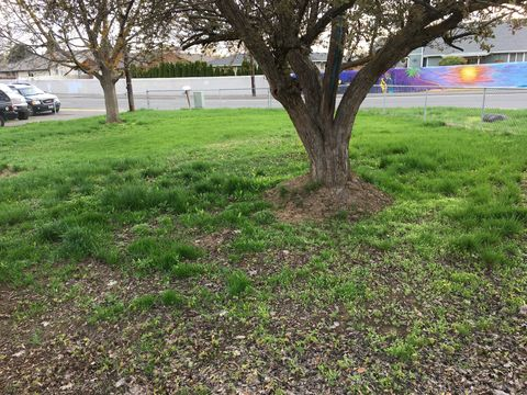 Photo of 1401 S 24th Ave # 1, Yakima, WA 98902