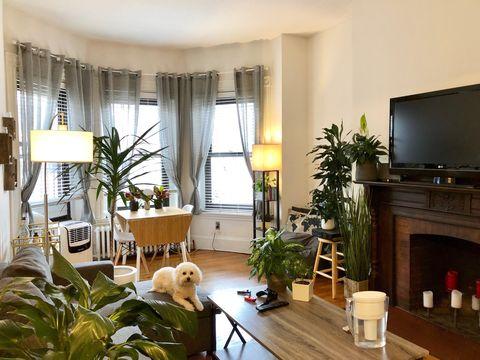 Photo Of 289 Newbury St 77 Boston Ma 02115 Apartment For Rent
