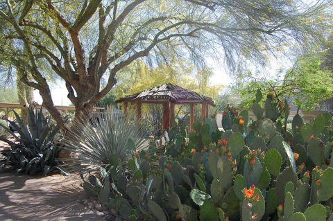 Photo of 132 E Brown Rd, Mesa, AZ 85201