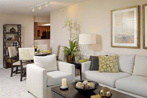 Arlington VA Apartments For Rent Realtor Beauteous 2 Bedroom Apartments In Arlington Va Exterior Interior