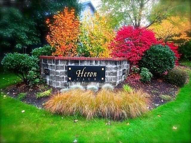 The Heron Club