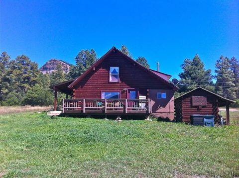 1021 Ute Dr, Pagosa Springs, CO 81147