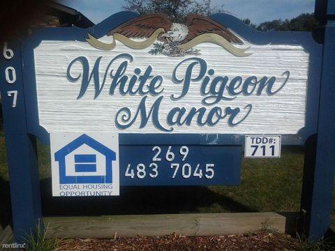 607 E Chicago Rd, White Pigeon, MI 49099