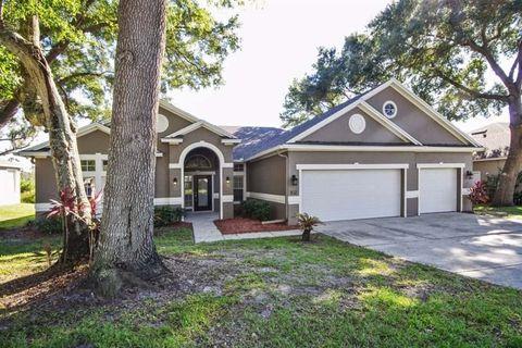 371 Blue Stone Cir, Winter Garden, FL 34787. House For Rent
