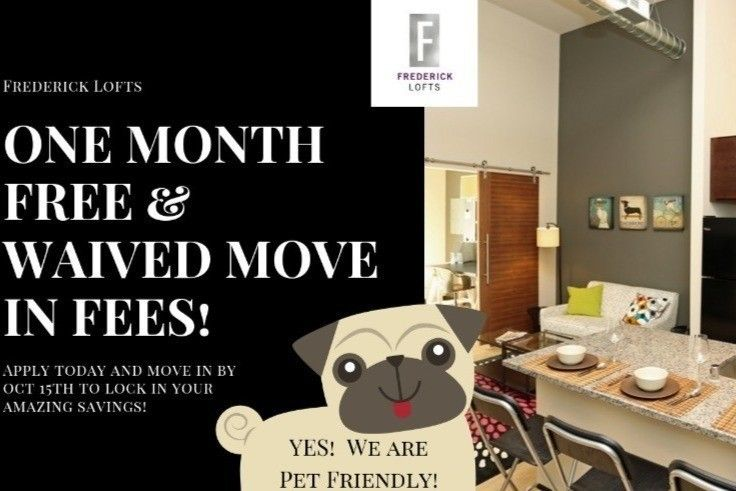840 W Juneau Ave  Milwaukee  WI 53233. Milwaukee  WI Apartments for Rent   realtor com
